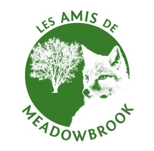 Les Amis de Meadowbrook is a non-profit, grassroots organization of concerned citizens of Montreal West, Cote St. Luc and NDG, dedicated to preserving the green space of Meadowbrook golf course.